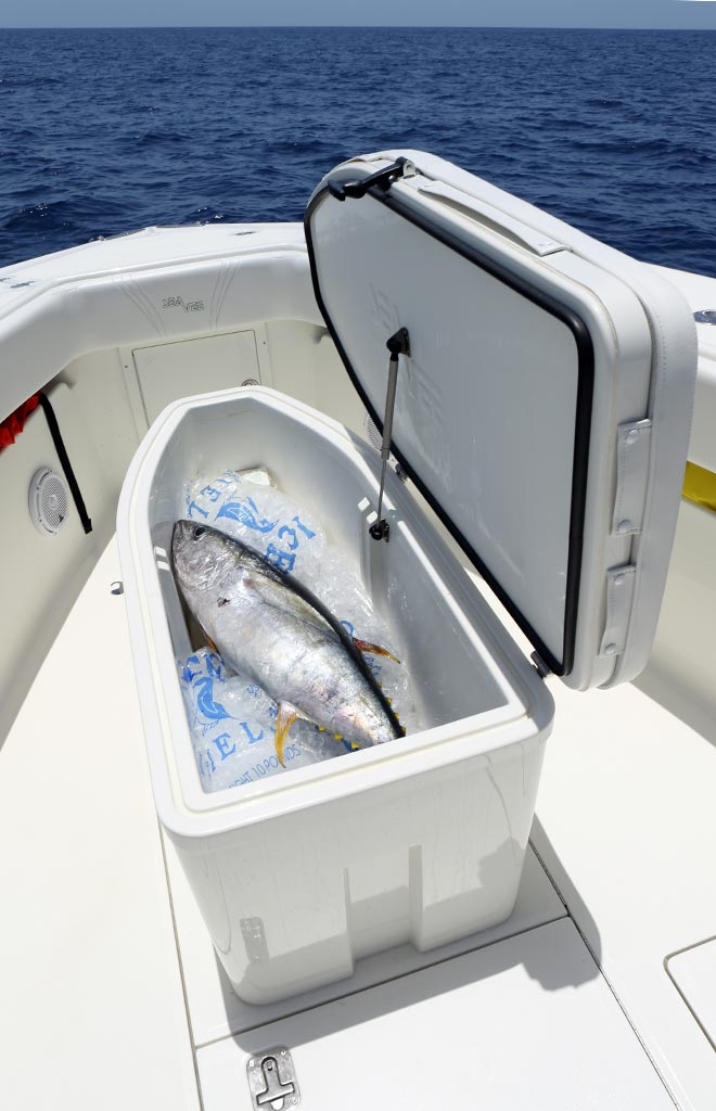 Choose How To Configure Insulated Fish Boxes In Deck Storage Compartments
